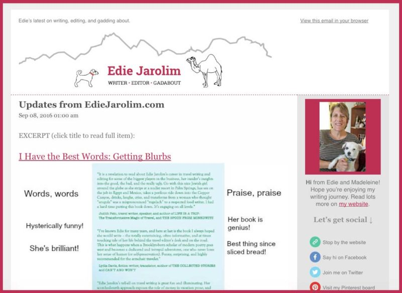 edie-jarolim-newsletter-sample