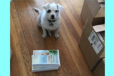 National Marketing My Book in November Month Challenge: Official Spokesdog